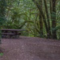 Secluded picnic areas in Ludlum Campground.- Ludlum Campground