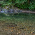 Crystal clear waters in the East Fork of the Winchuck River.- Ludlum Campground