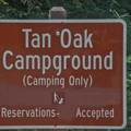 Tan Oak Campground at Mount Madonna County Park.- Tan Oak Campground