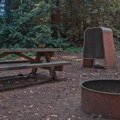 Typical campsite.- Tan Oak Campground