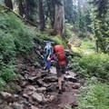 Denny Creek Trail.- Melakwa Lake via Denny Creek Trail