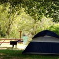 Tent site on the Skagit River.- Howard Miller Steelhead Park Campground