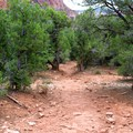 The Trans-Zion Trek in Zion National Park.- Trans-Zion Trek