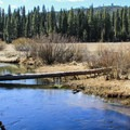 Known for wild trout and challenging fishing, Yellow Creek flows right by the campground.- Yellow Creek Campground