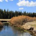 Yellow Creek.- Yellow Creek Campground