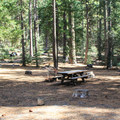 Yellow Creek Campground.- Yellow Creek Campground