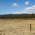 Humbug Meadow.- Soda Springs Historic Site
