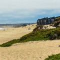 Ice plants cling to the small dunes. Fire pits are provided.- Del Monte Beach