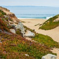 The beach at Fort Ord State Park.- Fort Ord Dunes State Park