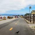 Monterey Recreation Trail.- Lovers Point Beach