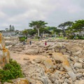 Looking at the park from the rocks.- Lovers Point Park