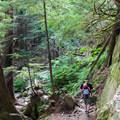 Family-friendly trail to Bridal Veil Falls.- Bridal Veil Falls, Washington