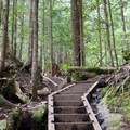 Stairs on the trail to Bridal Veil Falls.- Bridal Veil Falls, Washington