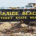 Seaside State Beach.- Seaside State Beach