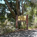 Welcome to The Forest Of Nisene Marks State Park.- Historic Loop Trail