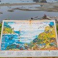 Harris Beach is home to a variety of wildlife.- Harris Beach