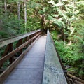Bridge across one of many creeks.- Lake Serene