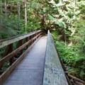 Bridge across one of many creeks.- Lake Serene