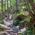 The going gets rougher and steeper.- Lake Serene