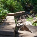 Well-travelled bridges through potentially marshy areas.- Lake Serene