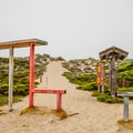 The path to Moss Landing State Beach.- Moss Landing State Beach