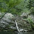 The pool below Whiteoak Creek Falls.- Whiteoak Creek Falls