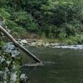 The deep pool at the bottom of Whiteoak Creek Falls invites a swim.- Whiteoak Creek Falls