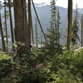 A view of the Hoh river 2,500 feet below on the trail to Hoh Lake.- Hoh to Sol Duc via High Divide Trail