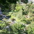 Looking down into the Japanese Friendship Garden.- El Prado