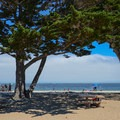 Picnic areas are available at Monterey Municipal Beach.- Monterey Municipal Beach