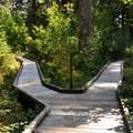 Shadow of the Sentinels boardwalk loop.- Shadow of the Sentinels