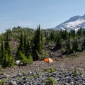 Backcountry campsite with South Sister (10,358') in the background.- Middle Sister, East Approach