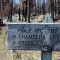Trail marker at the Pole Creek Trailhead.- Middle Sister, East Approach