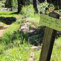 Signage is frequent and quite helpful with the network of trails in the area.- Bear Lakes Loop via Round Lake