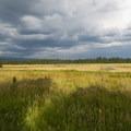 Looking northeast from the Willard Springs Loop Trail viewing platform.- Conboy Lake National Wildlife Refuge