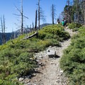 The Mount Tallac Trail climbs gradually from the trailhead en route to Cathedral Lake.- Cathedral Lake