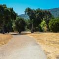 The Lower Meadow Trail.- Lower Meadow Trail to Deer Hollow Farm