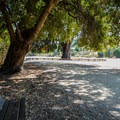 A shady spot on the Permanente Creek Trail.- Lower Meadow Trail to Deer Hollow Farm