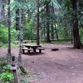 Spacious campsites in Sacandaga Campground.- Sacandaga Campground