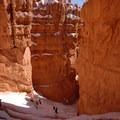 Descending into the Silent City on the Navajo Loop Trail.- Navajo + Queen's Garden Loop Trail