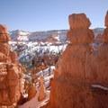 Hoodoos along the Bryce Canyon's Queen's Garden Loop Trail.- Navajo + Queen's Garden Loop Trail