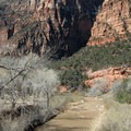 Crossing over the North Fork of the Virgin River.- Angels Landing Hike