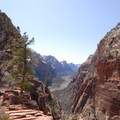 Narrow trail up to Angels Landing.- Angels Landing Hike