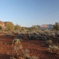 Iron oxide rich soil along the Chinle Trail.- Chinle Trail