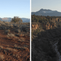 Left: Sagebrush and western junipers. Right: Huber Wash Canyon and Smithsonian Butte (6,780').- Chinle Trail