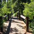 The Rod Beaudry Trail is one of multiple trails exploring the park grounds.- Sugar Pine Point State Park