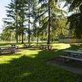 Lake Sammamish State Park picnic area.- Lake Sammamish State Park