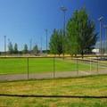 One of Marymoor Park's numerous sports fields.- Marymoor Park