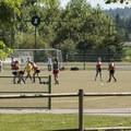 Soccer players at Marymoor Park.- Marymoor Park