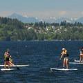 Stand-up paddlers on Lake Washington.- Houghton Beach Park